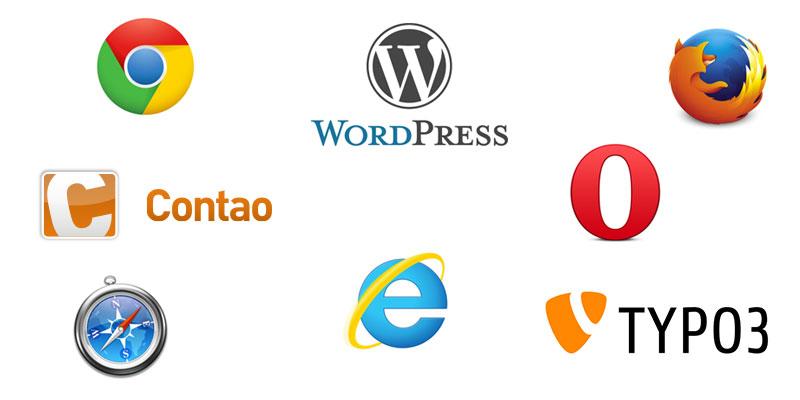 Werbeagentur für Website Programmierung mit CMS