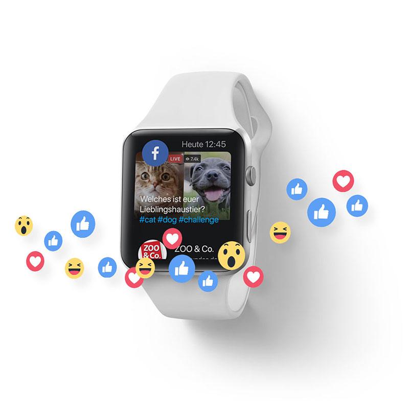 Werbeagentur für Social Media Marketing Beratung & Betreuung