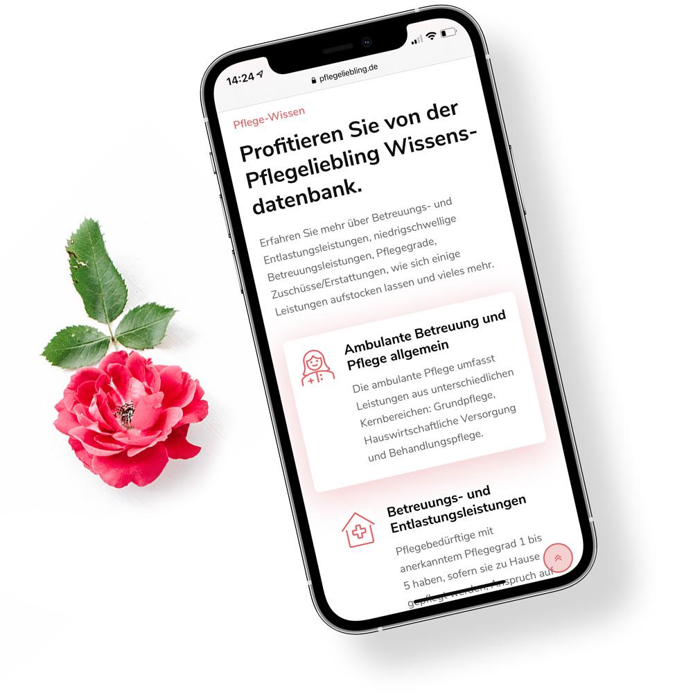 Markenentwicklung und Websiteentwicklung mit Responsive Webdesign für Pflegeliebling
